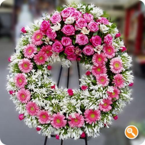 Coroa pink-beauty